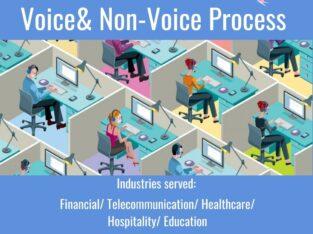 BPO Voice Process- Fusion BPO Services